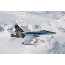 Italeri F/A-18 Hornet Tiger Meet 2016 1394