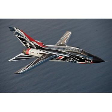 Italeri 1403 Tornado IDS 60th  Anniversary 1/72