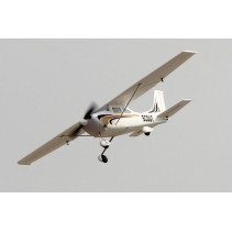 Dynam Scout Trainer 980mm w/oTx/Rx/Battery ARTF DYN8924V2